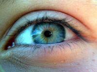 Choroby oczu : wytrzeszcz oka, jęczmień, jaskra i zez (choroba zezowa).