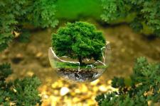 Idealny prezent na Światowy Dzień Ochrony Środowiska? Czyste powietrze!