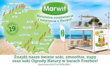 Soki Marwit w barach sezonowych Freebox