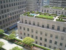 Jak zbudować zielony ogród na dachu?