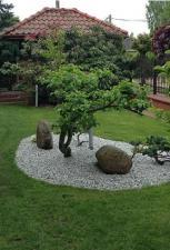 Co warto mieć w swoim ogrodzie?