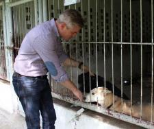 Maxi Zoo z miłości do zwierząt niesie pomoc charytatywną