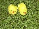 Kurczaczki z rzeżuchą