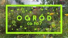 Przepis na idealny ogród - bezpłatne warsztaty dla dzieci w Ogrodzie Wola