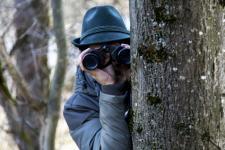 Patent na leśnych złodziei